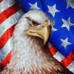eagle-intero-web